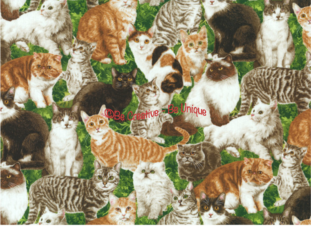 Fat Quarter - Cotton by Northcott - Kittens - Green
