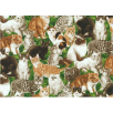 Cotton by Northcott - Whiskers - Kittens - Green