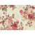 Cotton by Stof - Large Roses - Ivory